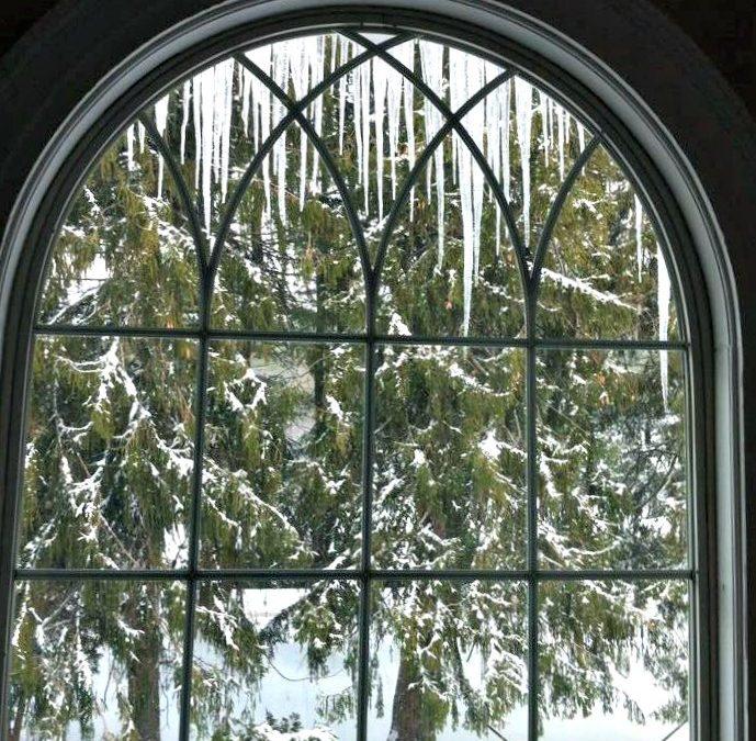 From My Window: Winter, 2016